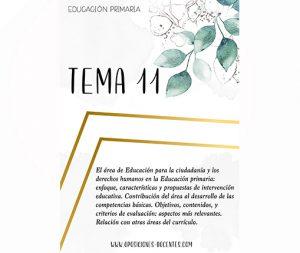 tema 11 educación primaria