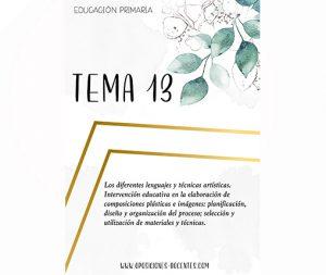 tema 13 educación primaria