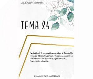 tema 24 educación primaria